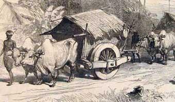 শিমুল বাশারের গদ্য 'ফিরে দেখা: পূর্বপুরুষের খোঁজে'
